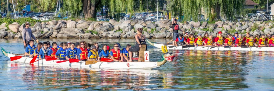 Paddles Up! Barrie's Annual Dragon Boat Festival