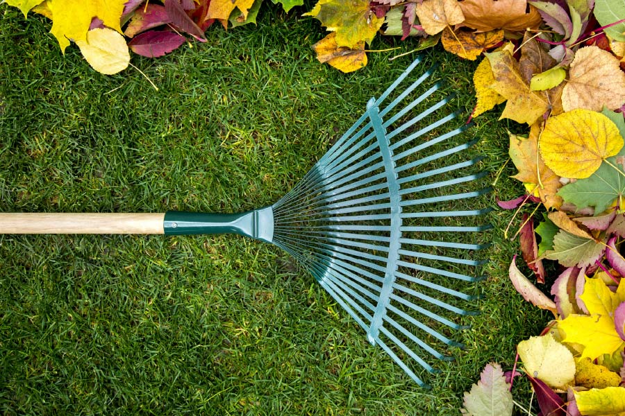 Winterizing your Garden
