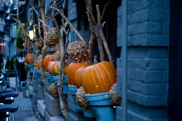 halloween pumpkins outside