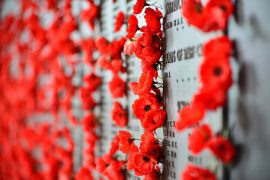 Hamilton Remembrance Day Ceremonies