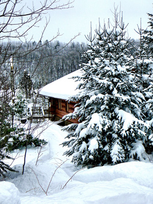 Cabin10_winter-web
