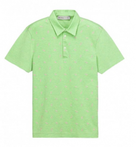 Etro mint green polo