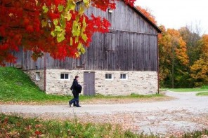 Take a Trip this Fall and See Ontario's Fall Colours