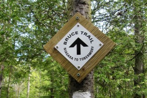 Bruce Trail Day, October 5: 10 places to celebrate!