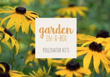 Garden in a Box from Conservation Halton