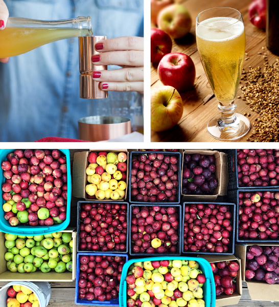 Ontario's Craft Cider